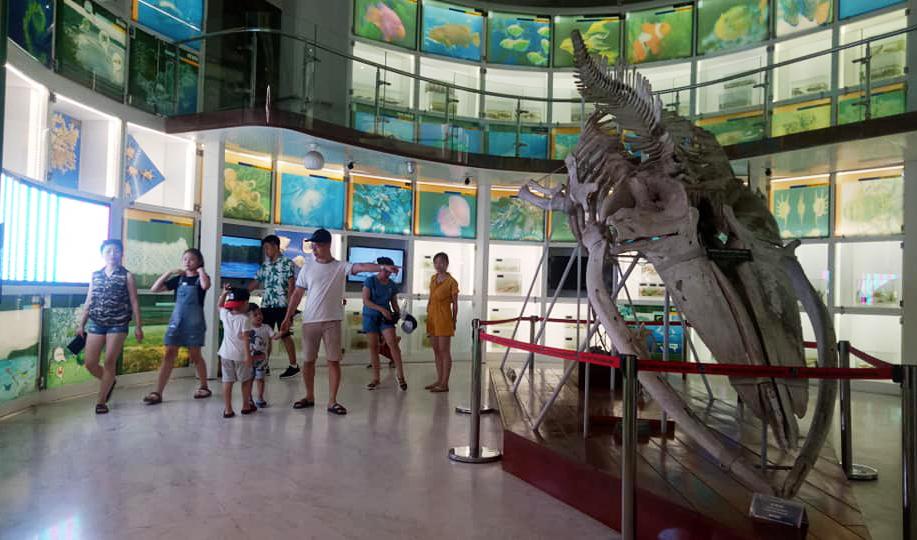 Du khách đến tham quan Bảo tàng Quảng Ninh.